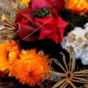 ドライフラワーに出来る簡単な花10選~お庭で育てて作ってみよう~