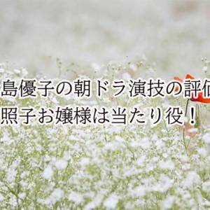 大島優子の朝ドラ演技の評価は?照子お嬢様は当たり役だ!