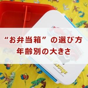 保育園のお弁当箱の大きさ(年齢別)の選び方!ご飯のみの場合は?