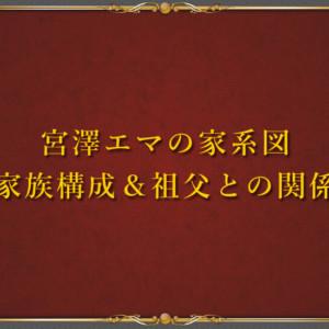 宮澤エマの家系図と華麗なる家族構成!元総理の祖父との関係は?